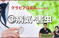 クラピアQ&A 病気・害虫