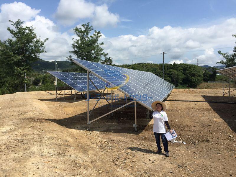 海外製太陽光パネル横置き4段構成の高さを表す写真