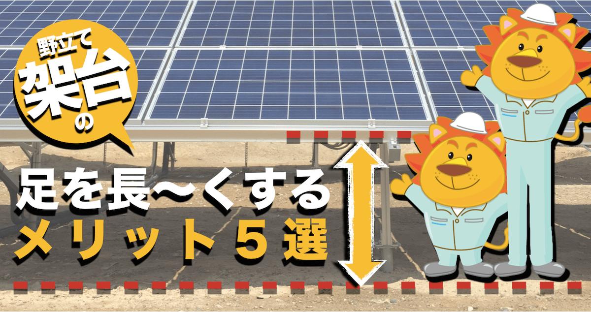 知らないと損!野立て太陽光発電で架台の地上高を高くするメリット5選