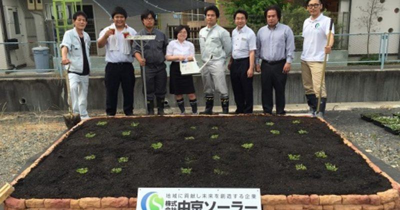 【クラピア】雑草対策事例・自社駐車場