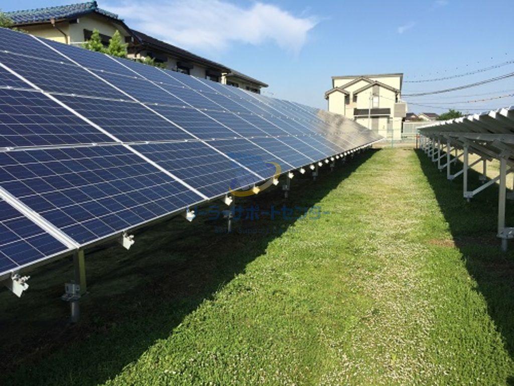 クラピアが繁茂した太陽光発電所