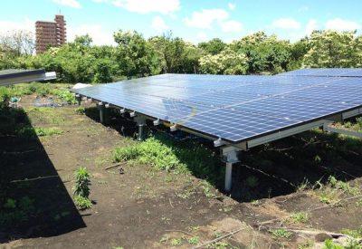 雑草の生えている太陽光発電所