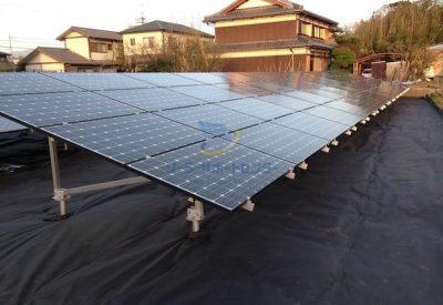 植栽シートライトを敷設した太陽光発電所