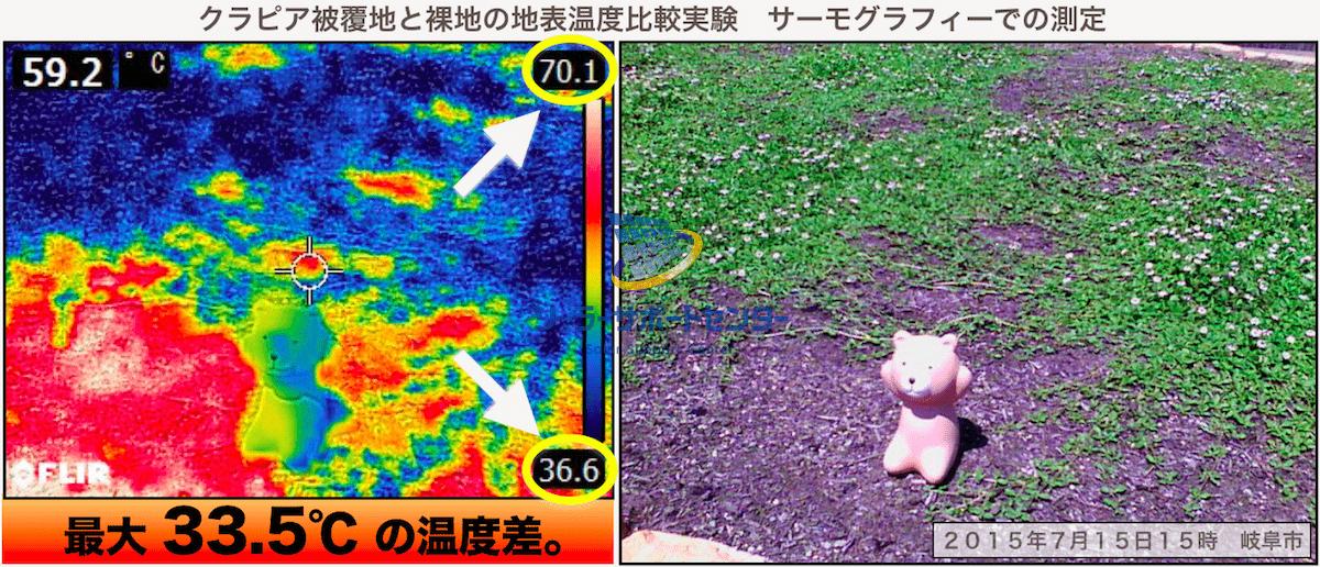 クラピアの地表温度上昇抑制効果をサーモグラフで撮影した画像