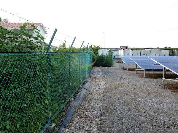 太陽光発電所の草刈り後2