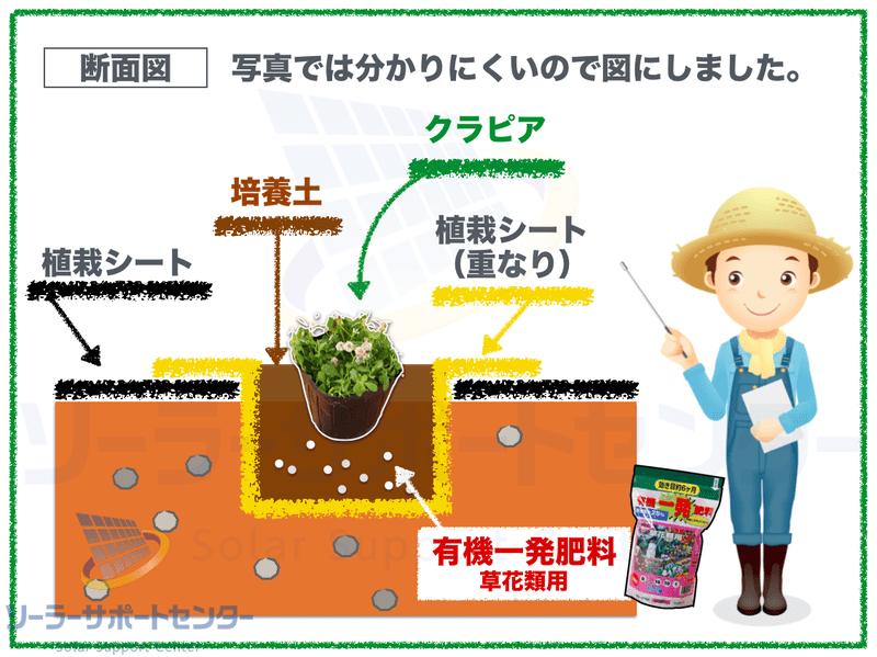 植栽シートを使ったクラピアの植え方