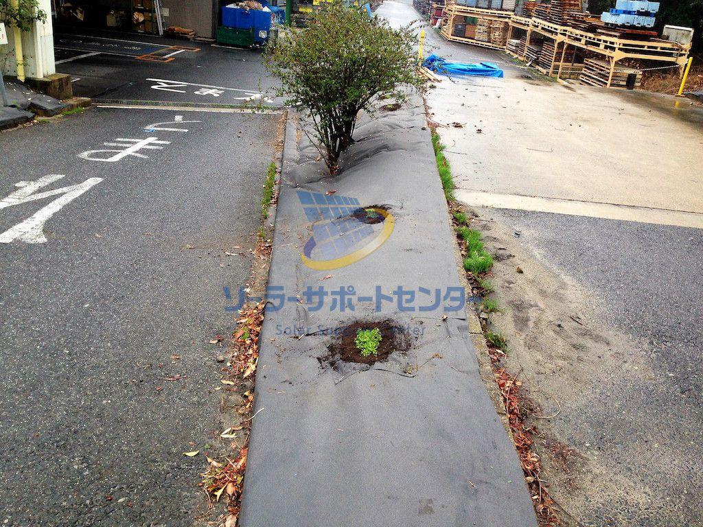 【クラピア】雑草対策、緑化事例・愛知県春日井市S様