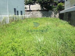 雑草対策前の写真2