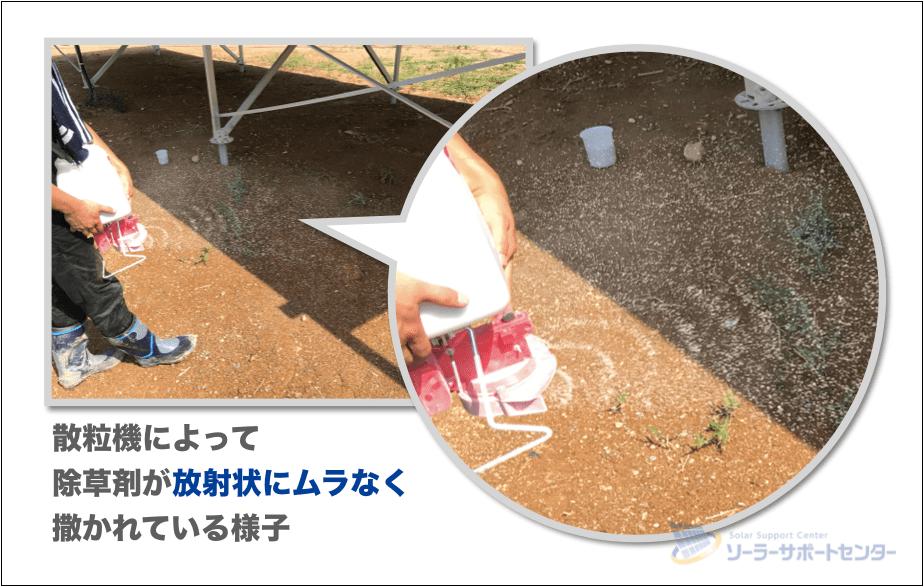 散粒機で除草剤を散布する様子
