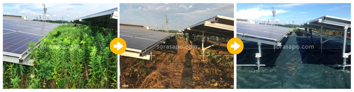 太陽光発電所の除草前・除草中・除草後の比較写真