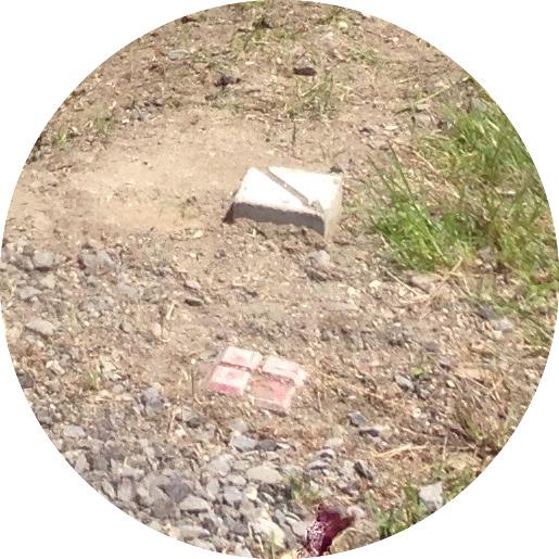 境界杭の写真