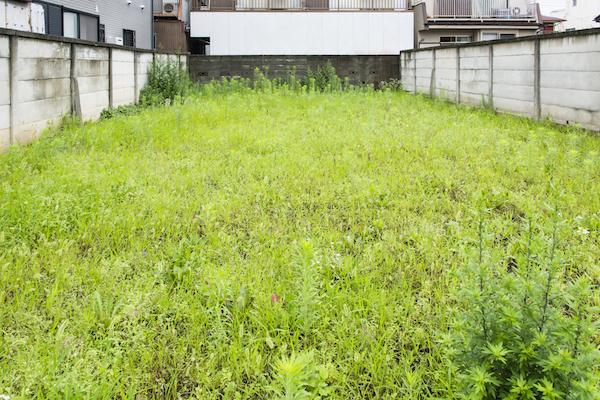 対策 庭 雑草
