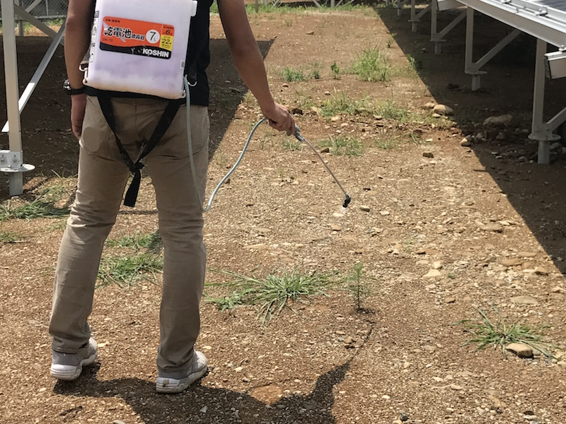 噴霧器での除草剤散布