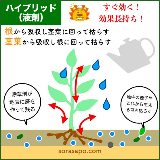 除草剤 仕組み 土壌処理型+茎葉処理型