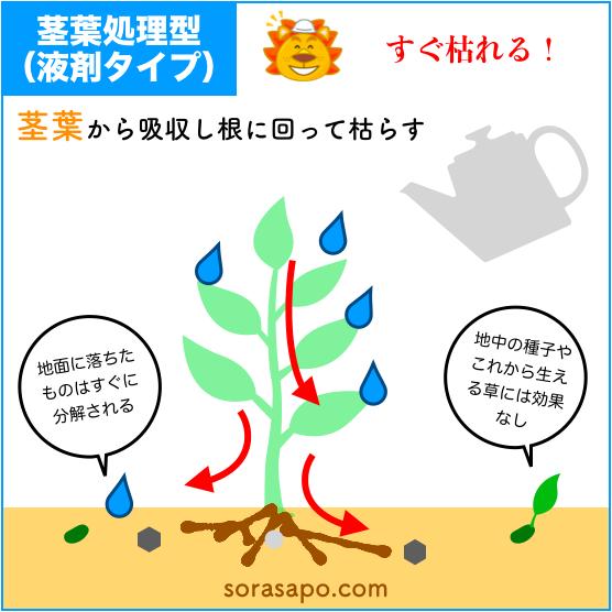 除草剤 仕組み 茎葉処理型
