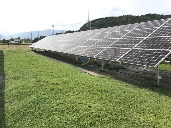 クラピアが太陽光発電所で広がる過程3