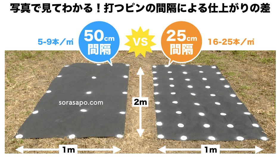 固定ピンの間隔が50cmと25cmの比較写真