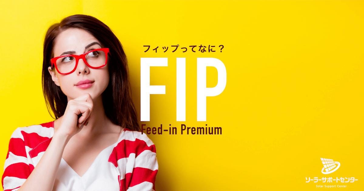 FIP制度