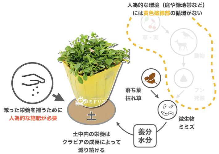 人工的な環境下での栄養の循環