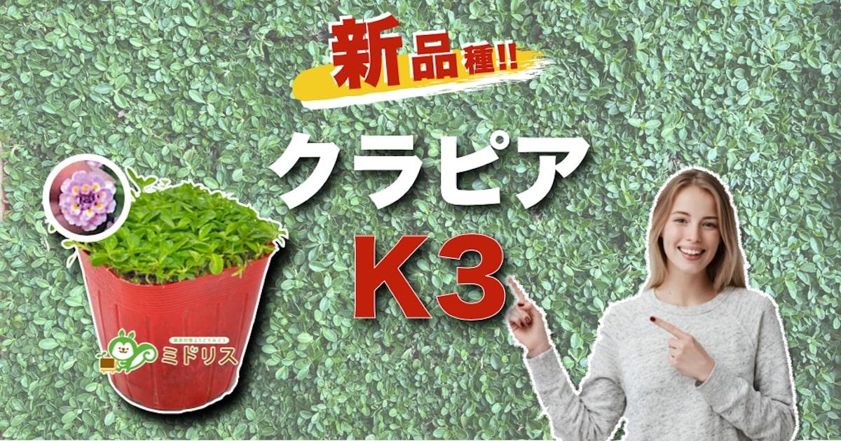 新品種!クラピアK3の特徴は7つ|K5・K7との比較を大公開